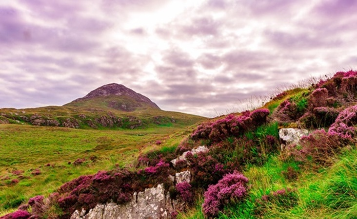 Landschaft in Irland